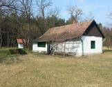 Eladó ház, Kecskemét, Hangulatos kis tanya a fenyőerdő közepén