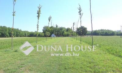 Eladó Ház, Pest megye, Nagykőrös, Lajosmizsei út mellett közel 2,5 Ha területtel