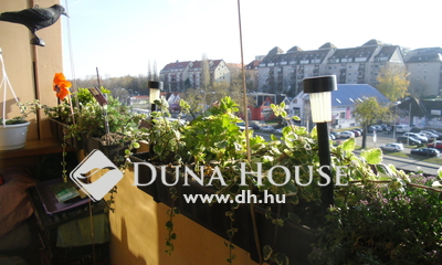 Eladó Lakás, Budapest, 17 kerület, 4 szobássá alakítható, erkélyes, kiváló helyen