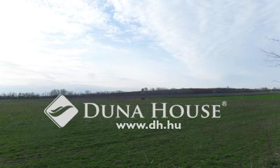Eladó Telek, Bács-Kiskun megye, Kecskemét, Aszfaltos út mellett ipari terület eladó