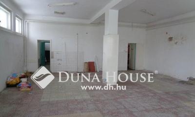 Eladó üzlethelyiség, Bács-Kiskun megye, Tiszakécske, Központtól 1 km-re 150 nm-es ház