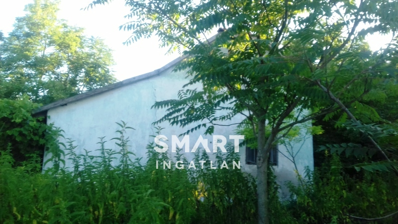 Eladó Ház, Bács-Kiskun megye, Kiskunfélegyháza, Tanya utca