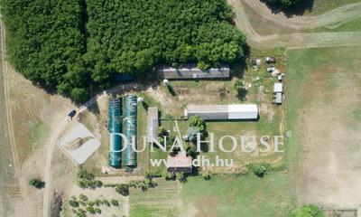 Eladó Ház, Bács-Kiskun megye, Lajosmizse, Baromfitelep Lajosmizse közelében