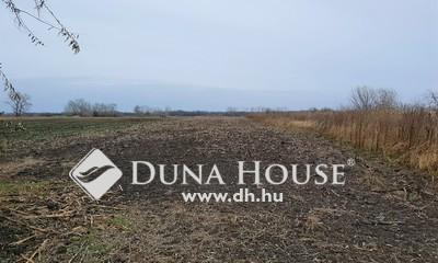 Eladó Telek, Pest megye, Bugyi, 2 hektáros TEHERMENTES szántóföld