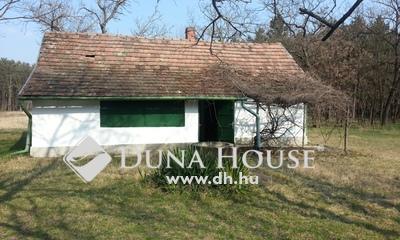 Eladó Ház, Bács-Kiskun megye, Nyárlőrinc, Hangulatos kis tanya erdő közepén